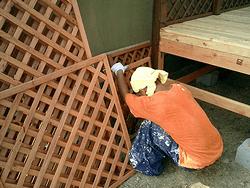壁面の設置作業